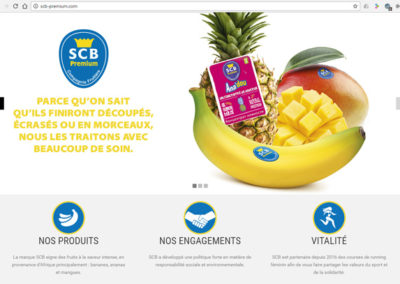 Site web SCB-Premium